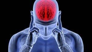 6 mitos que você precisa saber sobre o cérebro