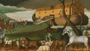 A Arca de Noé poderia mesmo flutuar