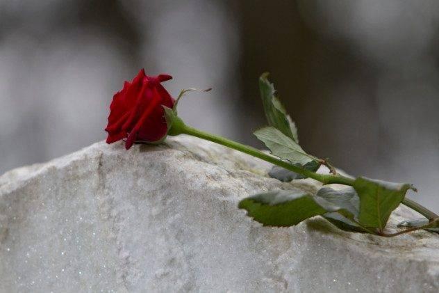 10 pessoas que simplesmente não puderam dizer adeus (8)