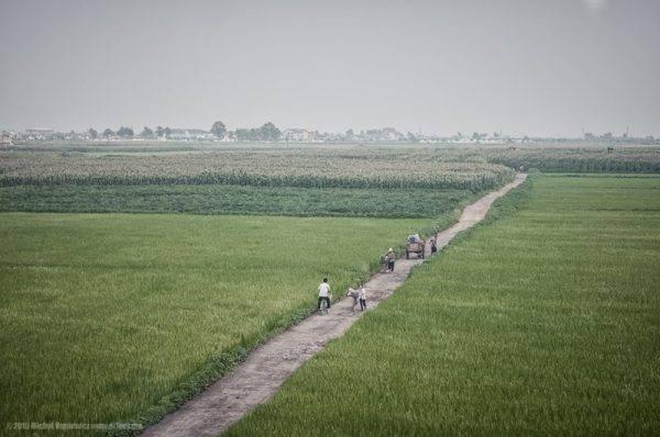 9-campo-de-arroz-coreia-do-norte