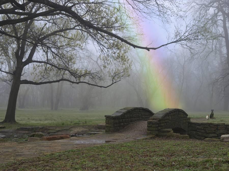 Formação do arco-íris próximo do solo