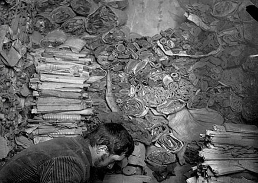 A biblioteca na caverna