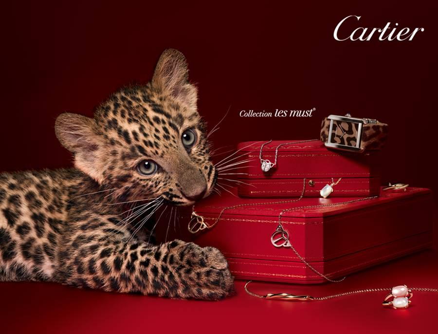 Marca de joias Cartier