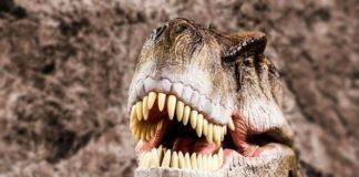 50 fatos científicos e curiosos que você precisa saber