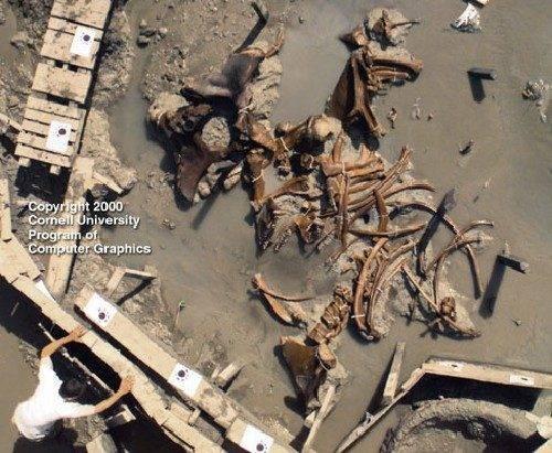 Fotos mostram claramente a evidência da existência de gigantes na Terra (6)