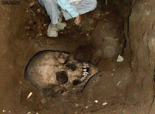 Fotos mostram claramente a evidência da existência de gigantes na Terra (9)